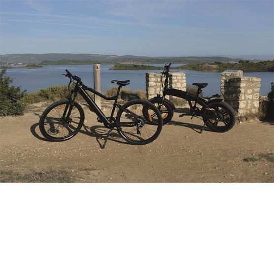 Narbonne EZA Energie Off Road Electric Mountain Bike image 4