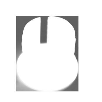 Remiform + Remiform II- magnetic holder D10x5