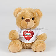 Valentines Day Soft Toy gift in Campervan T-shirt- lion or Teddy