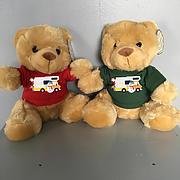 Stocking Filler Christmas Teddy in Cute Xmas designs Tshirt