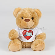 Valentines Soft Toy with Motorhome T-shirt- teddy or lion