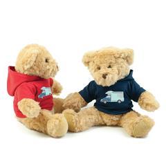 Teddy Bear in Hoodie
