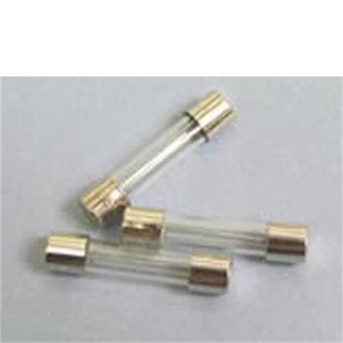 10 Amp Glass Fuse image 1