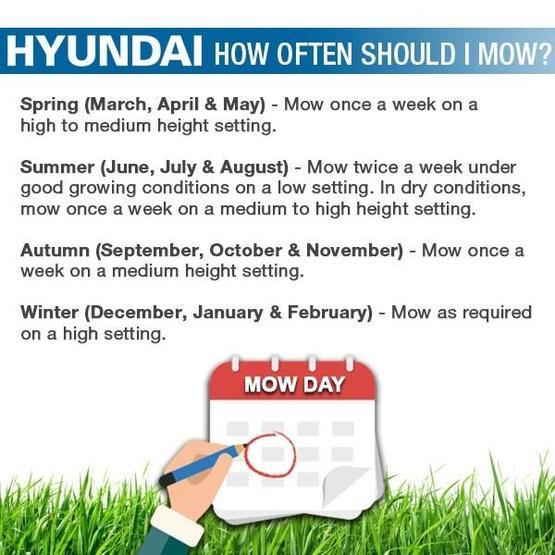 "Hyundai HYM530SPER 21"" 525mm Self Propelled Electric Start 173cc Petrol Roller Lawn Mower image 29"